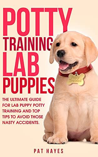 Potty Training Lab Puppies